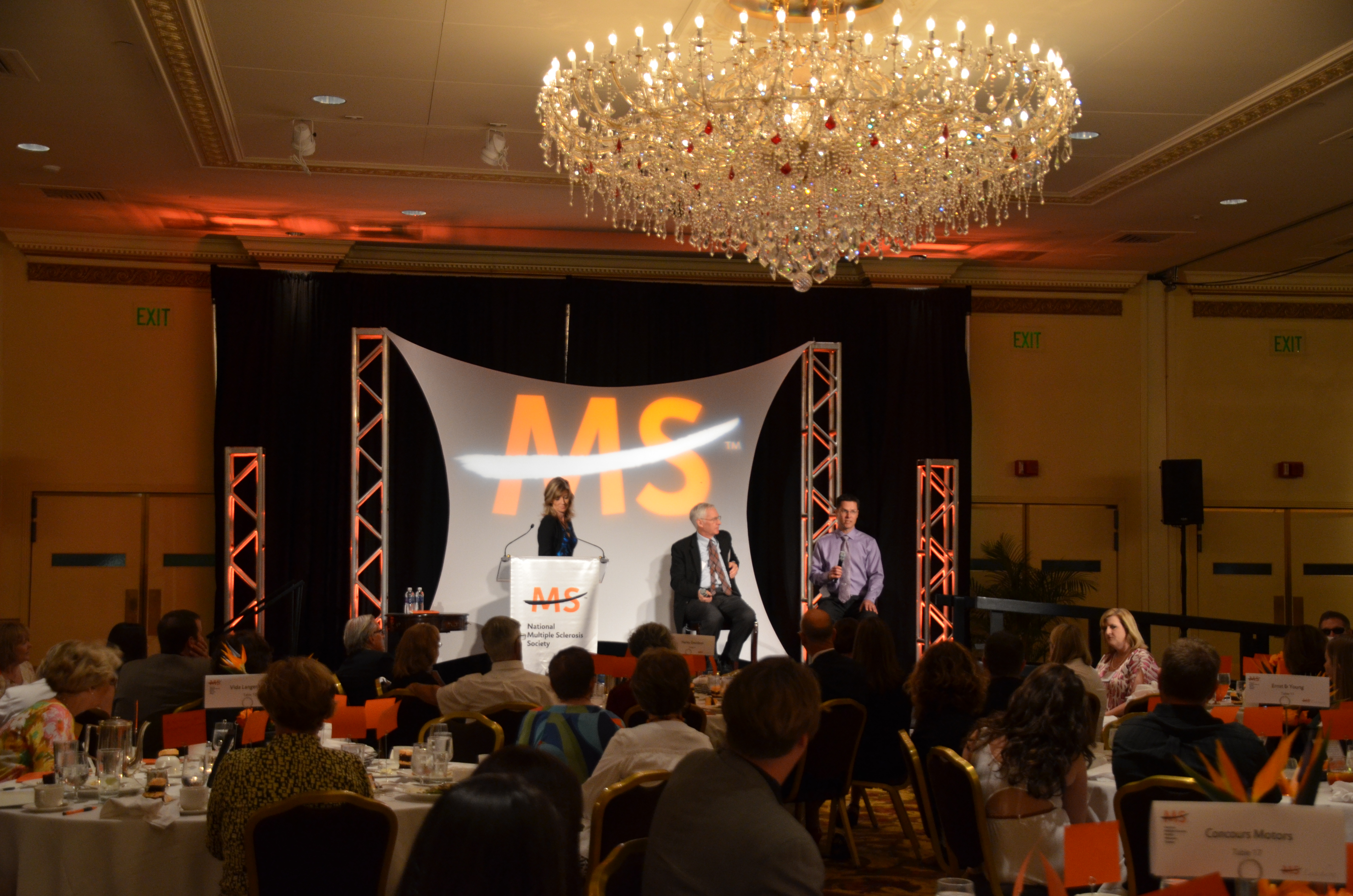MS Luncheon-3 2012.jpg